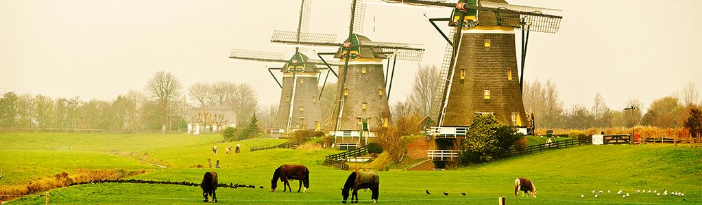 VCA cursus Zoetermeer